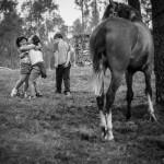 Vacaciones rurales con niños en España