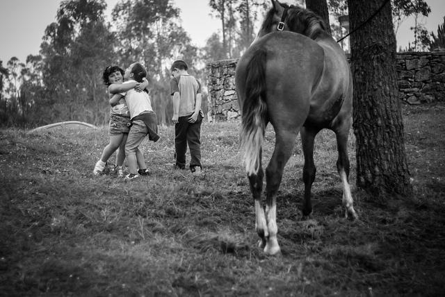 vacaciones rurales niños