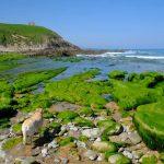 Cantabria con niños: las mejores playas y planes en familia