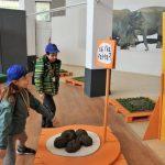 La historia de la caca, eje de una exposición en un museo de Roma