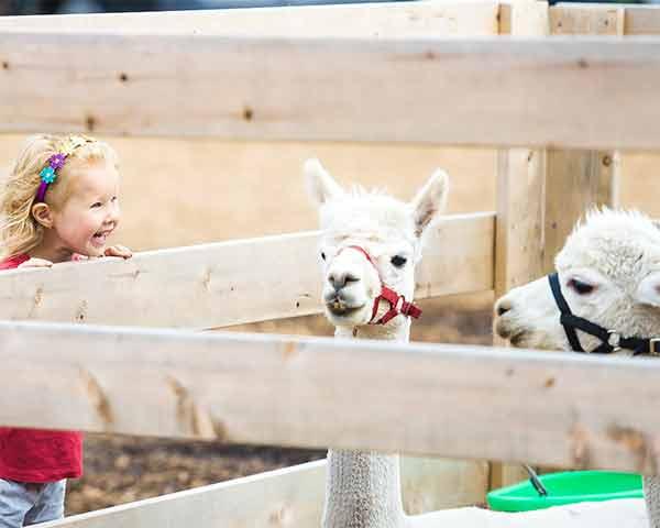 zoo con niños