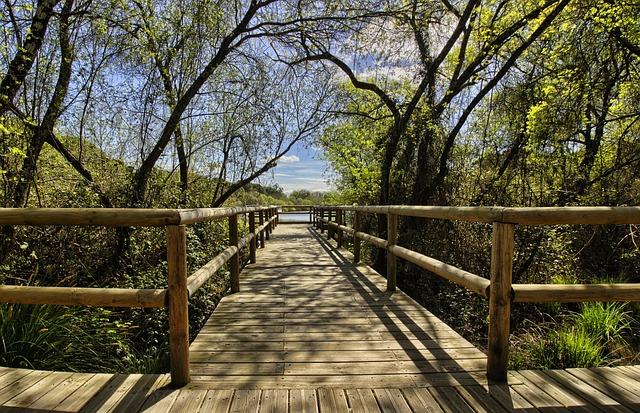 Parque Doñana